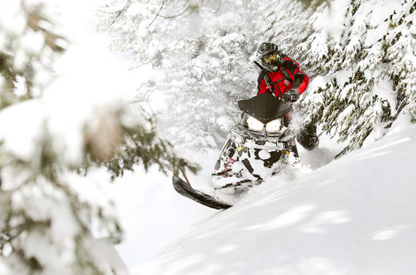 "<h1>Snowmobile Pictures - Snowmobiling Photography - Polaris Snowmobiles</h1>  <a href=""http://www.toddwilliamsusa.com/portfolio/snowmobile"">Snowmobile Pictures</a> <a href=""http://www.toddwilliamsusa.com/portfolio/snowmobile"">Snowmobiling Photography</a> <a href=""http://www.toddwilliamsusa.com//portfolio/snowmobile"">Polaris Snowmobiles</a> Snowmobile Pictures - Snowmobiling Photography - Polaris Snowmobiles - Pro RMK - PRORMK - Polaris Industries - Todd Williams - toddwilliamsusa.com - Powder - POW - Shred Powder turns - Powder turns - Wyoming Snowmobile - Wyoming Grand Tetons - Grand Tetons - TogwoteeLodge - Togwotee Lodge - Togwotee Mountain Lodge - Sled -Sleds - sleds -sled - snow - Snow - Snowmobiles - Snowmobile Snowmobile images - Snowmobile Images - Snowmobile Jumping - Jumping Snowmobiles - Snowmobile image - Worlds Greatest Snowmobile Pictures - Artitc cat - Arctic Cat Snowmobiles - Skidoo - Skidoo Snowmobiles - Sled Skidoo - Yamaha Snowmobiles - Snowmobile Magazines Sled Heads Sledhead 24 - FOX SHOCKS - FOX - Shox - Chris Burandt - Back Country Adventure - Back country adventures - Thunderstruck - Snow Shoots - Snow shoot - Turbo sleds - turbo sled - fox - Boondocker Turbo - Boondocking Tree - tree lines - Dan Adams - Todd Williams - Indy, Axys, Rush, SKS , Switch Back, Polaris Switch Back, Polaris SKS, Polaris Indy"